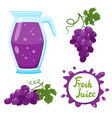 set of grapes juice and berries isolated on vector image