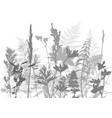 tempalte with leaves and plants silhouettes vector image
