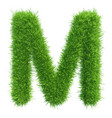 capital letter m from grass on white vector image vector image
