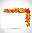 Colorful autumn maple leaves with note paper vector image vector image