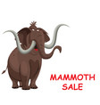 comical mammoth sale vector image vector image