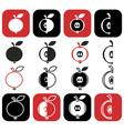 cut into pieces of apple vector image vector image