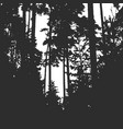 forest texture for your background vector image