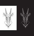 goat face linear saola head design vector image