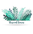 Summer tropic background with palm leaves