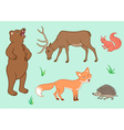 The forest animals vector image vector image