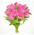 Bouquet of pink tulips vector image vector image