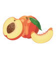 cartoon peach a peach in a cut a vector image vector image