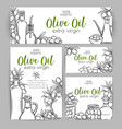 corporate style template olive oil vector image