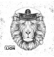 hipster animal lion captains cap and smoking pipe vector image