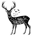 stylized decorative deer ink hand drawn vector image vector image