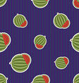 Watermelon pattern Seamless texture with ripe vector image vector image