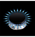 gas flame stove isolated vector image