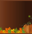 autumn design with pumpkin and fallen leaves vector image