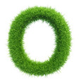 capital letter o from grass on white vector image vector image