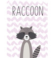 cartoon animal cute raccoon poster card vector image vector image
