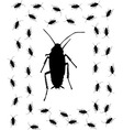 cockroach brush vector image vector image
