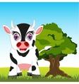 Cow on meadow vector image vector image