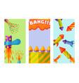 fireworks pyrotechnics rocket brochure flapper vector image vector image