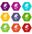 flower icons set 9 vector image vector image