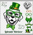 labrador retriever dog and design elements st vector image vector image