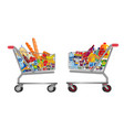set isolated shopping trolley full food vector image