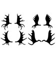 set of different moose antlers vector image vector image