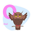 zoo abc letter with cute owl cartoon vector image vector image