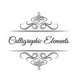 calligraphic design elements decorative swirl vector image