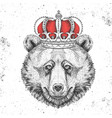 hipster animal bear in crown vector image vector image