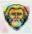 hipster animal monkey on artistic background vector image vector image