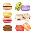 isolated macaroon goods set vector image vector image