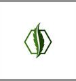 letter-s-cbd-logo vector image vector image