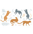 wild cats in different poses collection clip art vector image