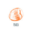 hand drawn peach on white background vector image vector image