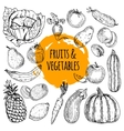 Healthy food collection hand drawn doodle vector image