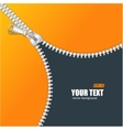 realistic zipper and orange space vector image vector image
