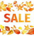 Seamless pattern of autumn leaves Autumn sale vector image vector image