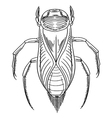 Water beetle outline vector image vector image