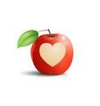 apple heart vector image vector image
