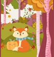 cute fox with pumpkin forest hello autumn vector image