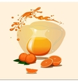 decanter of orange juice background Splash vector image