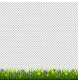 flowers border with grass transparent background vector image
