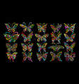 ornate butterfly collection for your design vector image