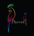 Parrot design vector image vector image