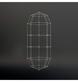 Wireframe mesh Polygonal capsule The capsule of vector image vector image