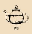 teapot hand drawn transparent vector image