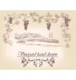 hand drawn label vineyards vector image