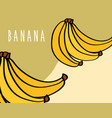 banana fruit tropical fresh natural on colored vector image vector image