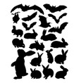 bat and rabbit detail silhouette vector image